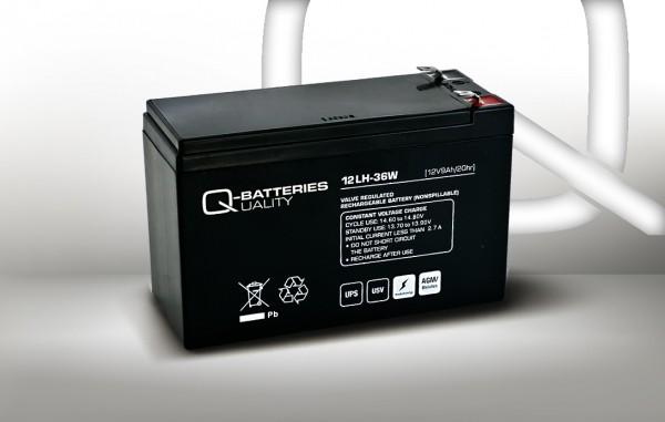 Ersatzakku für AIPTEK PowerWalker VI 850 LCD / Markenakku mit VdS
