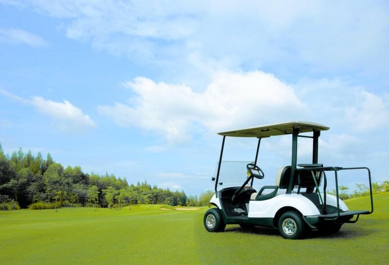 media/image/starter_golfcartsThKuBANyzPbdw.jpg
